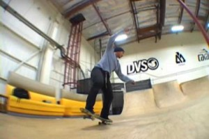 DAEWON SONG DORKING DVS