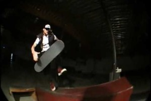 MIKE VALLELY THE BERRICS